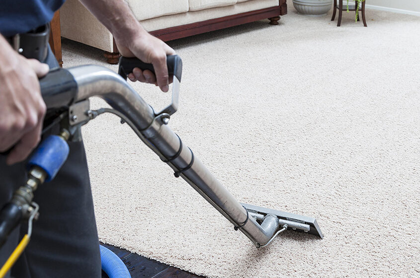 Why you need to Steam Clean your Carpets