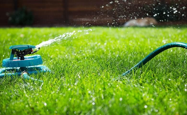 Lawn Care Services Ashburton