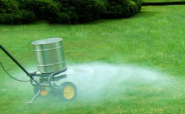 Lawn Maintenance Service Ashburton