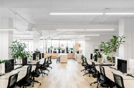 9 Office Makeover Ideas (on a Budget)